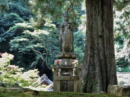 Head temple of the Soto sect located in Eiheiji Temple scenery / Fukui