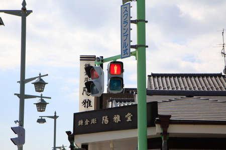 Ryusakimaou131000006