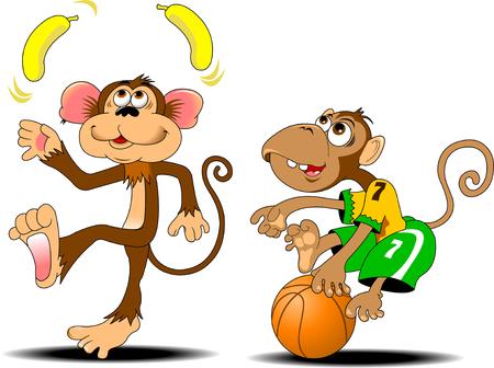 funny monkey juggling two yellow bananas