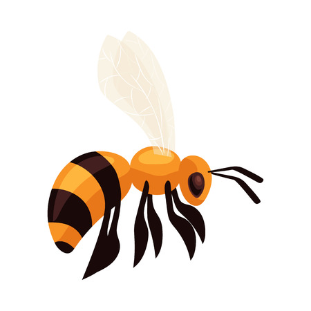 Illustration pour Flying honey bee, cartoon style vector illustration isolated on white background. Realistic drawing of a bumble bee flying to the hive, apiary icon - image libre de droit