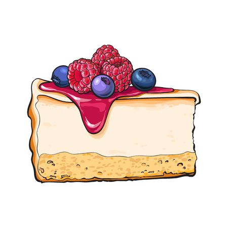 Vektor für Hand drawn piece of cheesecake decorated with fresh berries, sketch style vector illustration isolated on white background. Realistic hand drawing of piece, slice of cheesecake, cheese cake - Lizenzfreies Bild