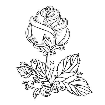 vector hand drawn sketch style elegant vintage rose wild flower with stem, leaves and blooming blossom black and white silhouette monochrome. Isolated illustration on a white background.