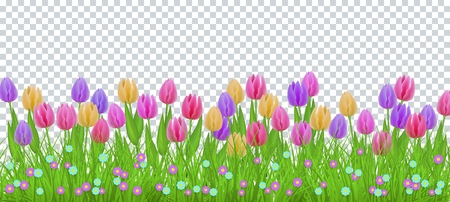 Illustration pour Green meadow grass, tulip flowers border frame, template on transparent background. Spring summer sale template for retail poster and advertising design wtih text space. Vector illustration - image libre de droit