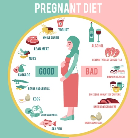 Illustration pour Pregnant woman diet infographic in flat style - vector illustration banner with young muslim girl in hijab with belly and information about healthy and unhealthy food for future mother. - image libre de droit