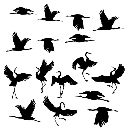 Ilustración de Silhouette or shadow black ink icons of crane birds or herons flying and standing set. Group of storks outline template or creative background vector illustration isolated on white. - Imagen libre de derechos