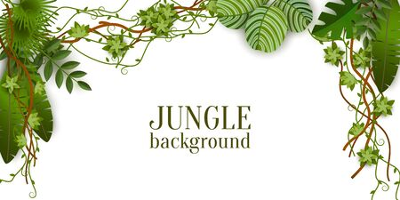 Illustration pour Green jungle plants background hanging from above, tropical exotic palm leaves and liana branches - isolated text template with blank space - realistic border vector illustration - image libre de droit