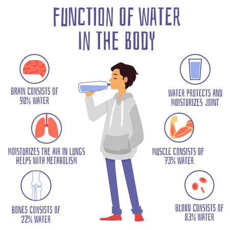Illustration pour Medical banner with information about function and benefits of water. Man drinking water from bottle, water balance and percentage in organs of human body. Vector flat illustration - image libre de droit