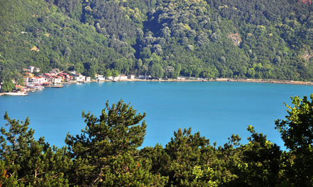Turquoise colored Bosphorus.  Turquoise color in Bosphorus is unusual. Plankton explosion' turns Istanbul's Bosphorus turquoise.