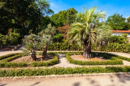 The jardin des plantes de Montpellier is a public botanical garden in Montpellier city, France