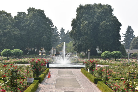 Photo pour Peninsula Park Rose Garden in Portland, Oregon - image libre de droit