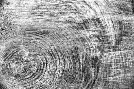 Photo pour Wood texture background, wooden bark close up. Grunge textured monochome image. - image libre de droit