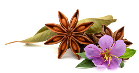 Photo pour Aromatic star anise over white background - image libre de droit