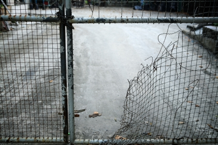 Photo for escape from wire mesh fence  - Royalty Free Image