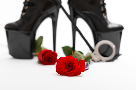 Rose with dominatrix equipment, isolated on white background