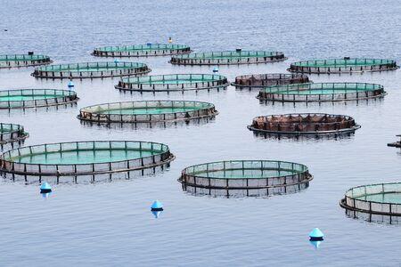 Photo pour Fish farm with cages floating in the greek sea - image libre de droit