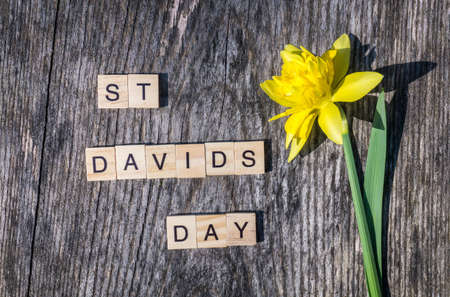 Photo pour St Davids Day text with yellow daffodil on wooden background - image libre de droit