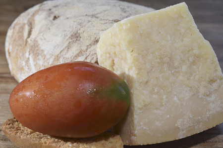 bread tomato and parmesan for tasty and wellness recipes