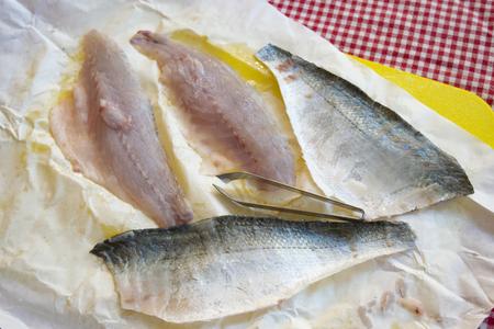 Photo pour filleted orata fillet ready to be cook - image libre de droit