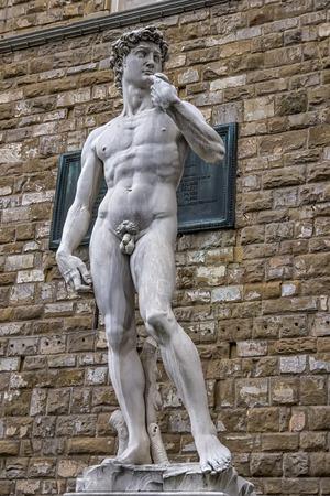 Photo pour The David of Michelangelo in the Piazza della Signoria Florence - image libre de droit