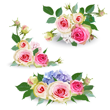 Illustration pour Bouquet of hydrangea flowers with roses and leaves. Isolated floral object on white background. Vector illustration. Editable element for design. - image libre de droit