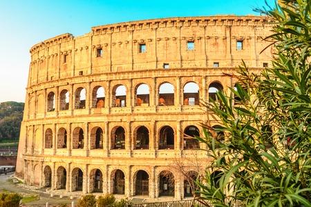Foto de view of Colosseum in Rome, Italy in the sunrise light - Imagen libre de derechos