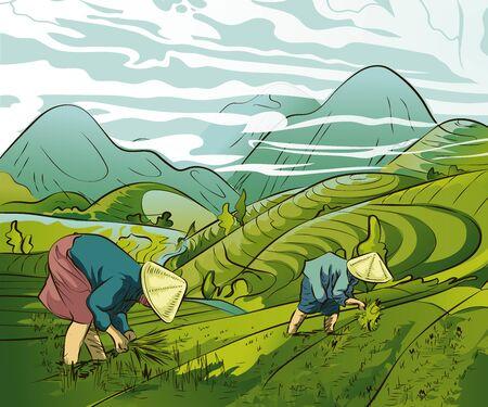 Illustration pour Illustration of farmers planting rice in the fields - image libre de droit