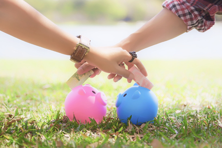 Photo pour hands of young men and young women cross to putting money into colorful piggy bank pigs on the lawn to keep a family., Couple saves money with piggy bank. - image libre de droit