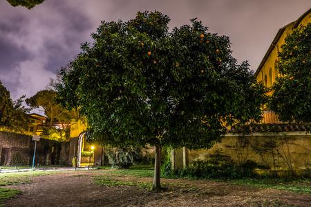 Park Orange Tree Aventino Rome