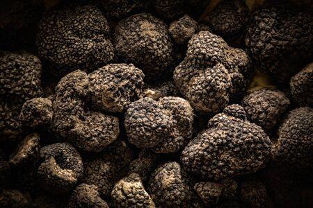 Photo pour Tuber Aestivum Black truffles, Umbria, Italy - image libre de droit