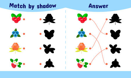 Vector illustration. Matching game for children. Connect the shadow of the berries. cloudberries, blueberries, cranberries, strawberries