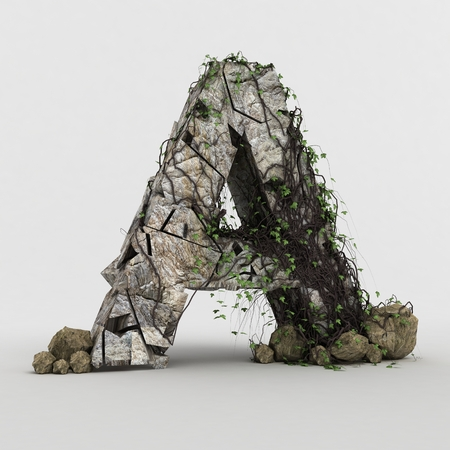 Alphabets in ivy Rocks