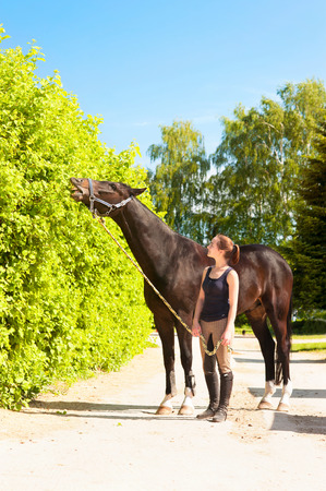 Black horse eating tree leaves close to young owner lady equestrian. Vibrant multicolored summertime outdoors vertical image.
