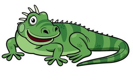 Illustrations of Cartoon green iguana