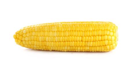 Foto für ears of Sweet corn isolated on white background - Lizenzfreies Bild