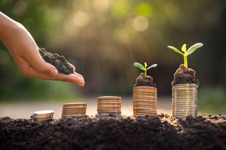 Foto de Money growth Saving money. Upper tree coins to shown concept of growing business - Imagen libre de derechos