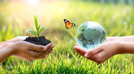 Foto de Concept Save the world save environment The world is in the grass of the green bokeh background - Imagen libre de derechos