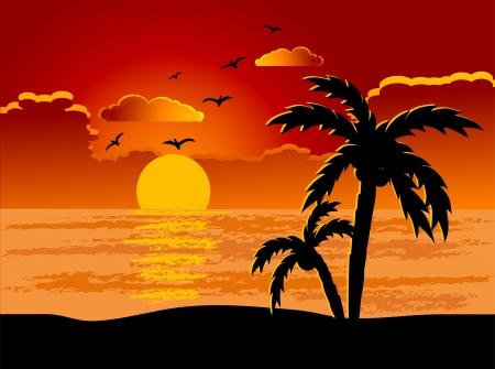 Illustration pour Palm treess on the beach - image libre de droit