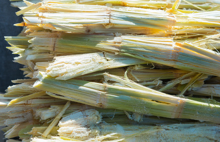 Photo pour Residue of sugar cane, the rest from the juice of sweet water was removed. - image libre de droit