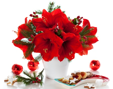 red amaryllis in vase with Christmas decorations