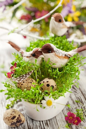 Easter decoration: birds and eggs on the fresh cress