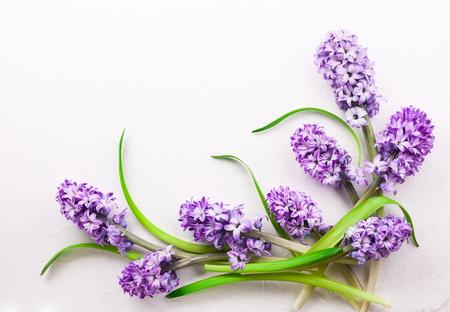 Foto de Flowers composition with lilac hyacinths. Spring flowers on white background. Easter concept. Flat lay, top view. - Imagen libre de derechos