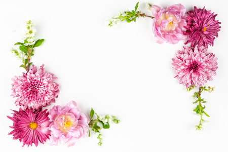 Photo for Beautiful pink flowers on white - Royalty Free Image