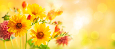 Photo for Beautiful autumn flowers on yellow blurred background. Dahlia, daisy, sunflowers. Panorama, banner with copy space - Royalty Free Image