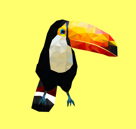 Low poly colorful toucan bird on soft back ground,animal