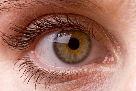 Photo pour Female single green eye close up - image libre de droit