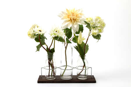 Still life with different flowers and a white background