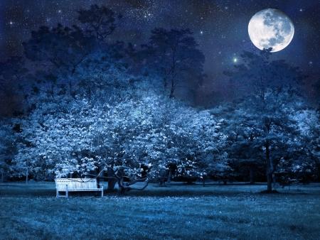 Surreal scene of full moon night in park