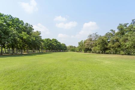 Foto de Green park and sky - Imagen libre de derechos