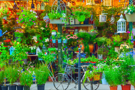Flower shop in Paris, France