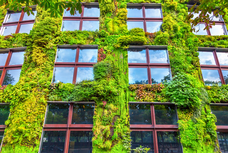 Photo pour Green wall - image libre de droit